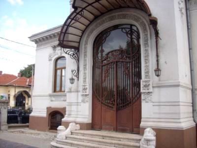 Casa spatioasa situata langa Synevo